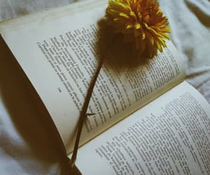 book, yellow, and yellow flowers image