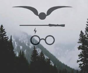 harry potter, wallpaper, and harry image
