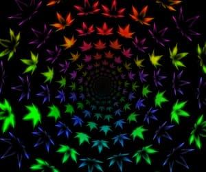 gif, colorful, and marijuana image