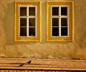 windows and yellow image