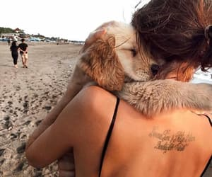 beach, pets, and beauty image