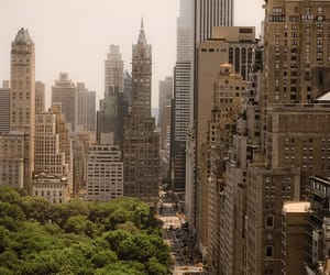 Central Park, new york, and manhattan image