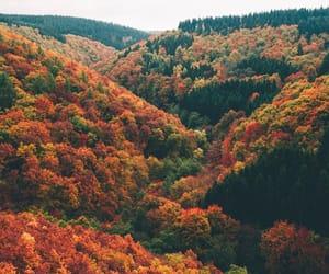 article, autumn, and original image