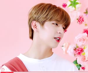 gif, Y, and choi sungyoon image
