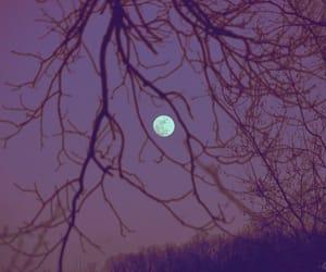 dark, nature, and moon image
