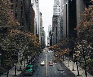bridge, new york, and new york city image