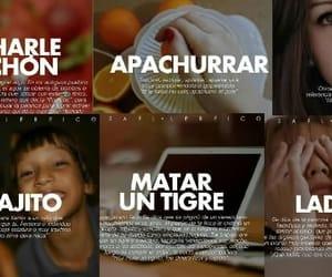 article, idioma, and venezolanismos image