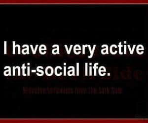 introvert, lol, and quote image