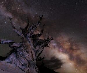 stars, astrophotography, and space photography image