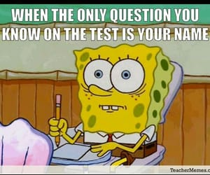 memes, relatable, and spongbob image