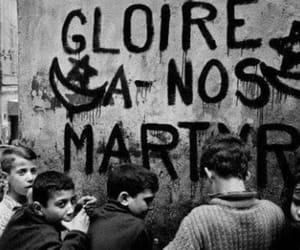Algeria, war, and guerre image