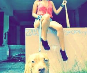 Algeria, bad girl, and dog image