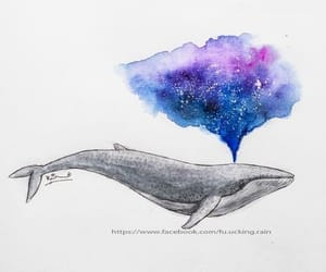 art, whale, and colorful image