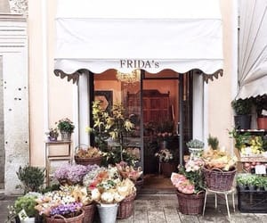 flowers, shop, and city image