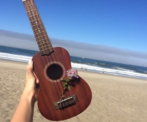 beach, flowers, and music image