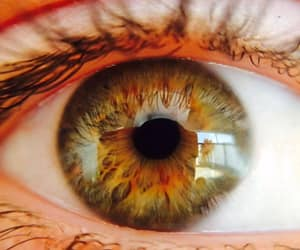 eyes, fire, and green image