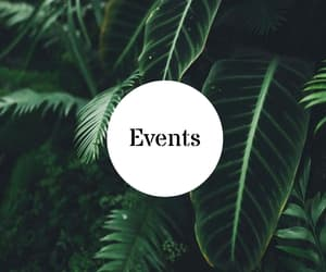 events, highlight, and youtube image
