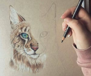 art, cat, and color image