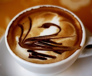 coffee, Swan, and drink image