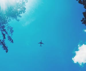 plane, blue, and forest image