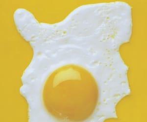 yellow and egg image