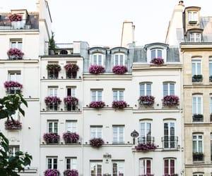 city, flores, and ciudad image
