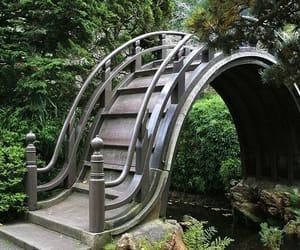 usa, japanese tea garden, and california image