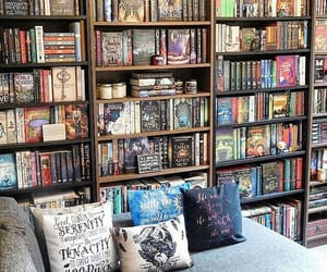 books, harry potter, and turtles all the way down image