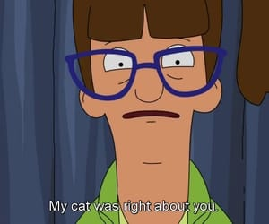 cat, funny, and bobs burgers image