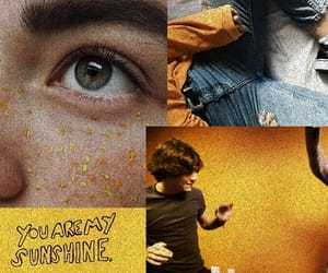 header, twitter, and yellow image