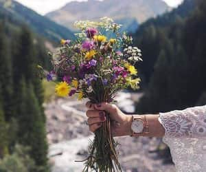 flowers, amazing nature, and mountains image