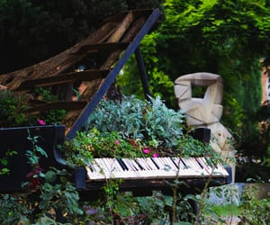 art, flower, and musical image