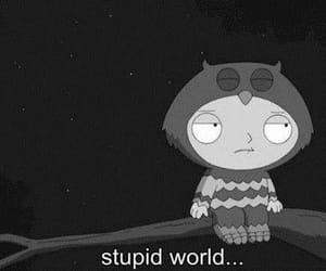 world, stupid, and black and white image