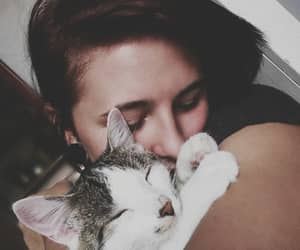 cat, photo, and love image