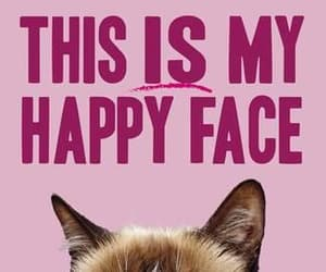 meme, grumpy cat, and this is my happy face image