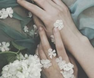 aesthetic, delicate, and design image