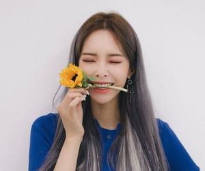 aesthetic, beauty, and kpop image