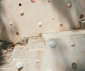 pretty, Tuscany, and shells image