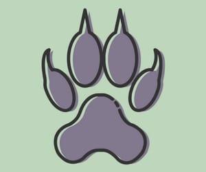 dog, gray, and green image