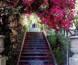 california, los angeles, and stairs image