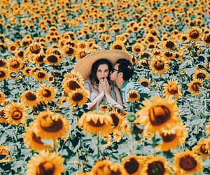 couple, dreamy, and fields image