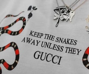 gucci, fashion, and snake image