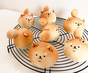 bread, dog, and food image