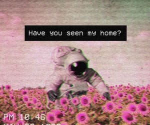 quotes, astronaut, and flowers image