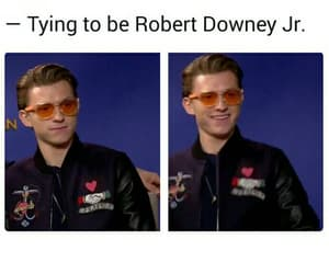 robert downey jr and tom holland image