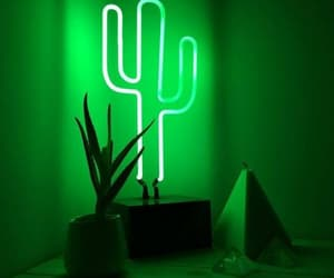 green, cactus, and light image