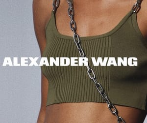 alexander, alexanderwang, and designer image