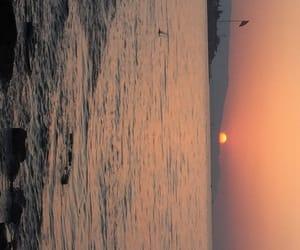 fish, ocean, and sun image