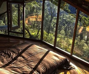 treehouse, sun rays, and forest image