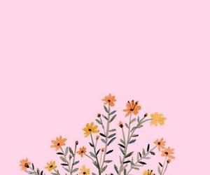 flowers, yellow, and orange image